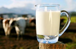 Автоматизація пастеризації молока